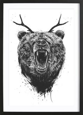 Angry Bear Framed Print