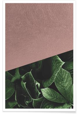 Botanic Rose affiche