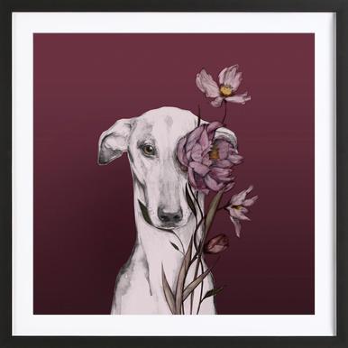 Greyhound Floro Red Framed Print