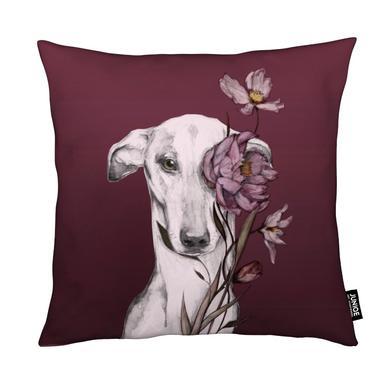 Greyhound Floro Red