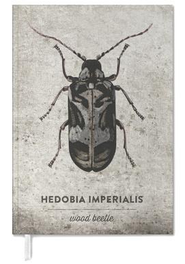 Hedobia Imerialis -Terminplaner