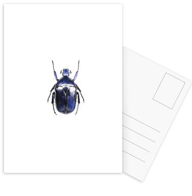 Torynorrhina Flammea -Postkartenset