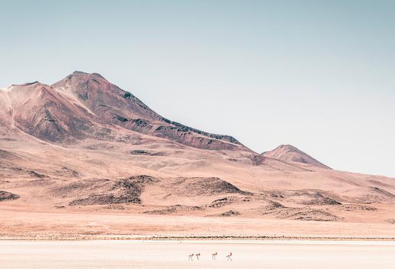 Raw 2 Salar de Uyuni Bolivia. -Alubild