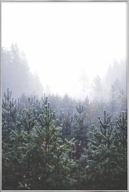 Misty Forest Poster in Aluminium Frame