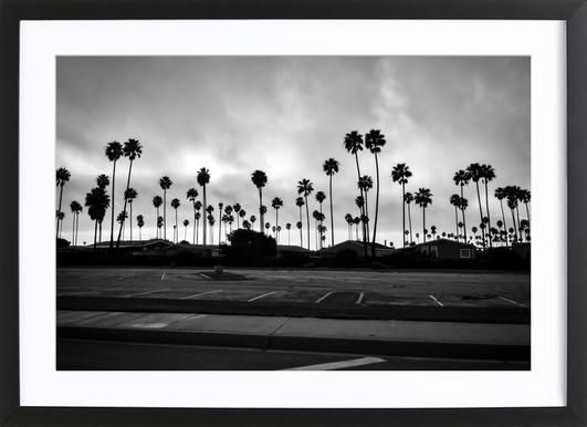 Palmtree Takeover Framed Print