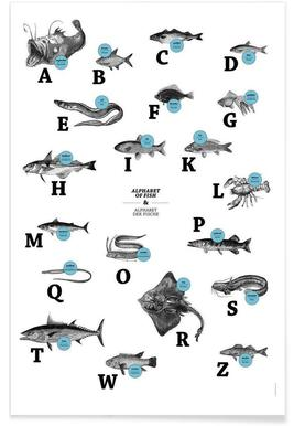 alphabet of fish, animal ABC