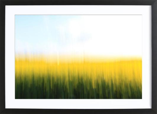 Fields Of Gold 01