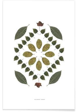 Botanicals 2 - Premium poster