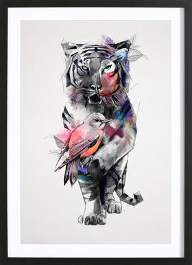 Tigers Eye Poster i träram