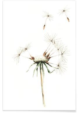 Dandelion -Poster