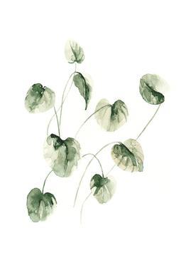 Drop Leaves alu dibond