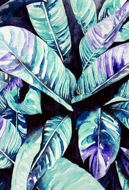 Palm alu dibond