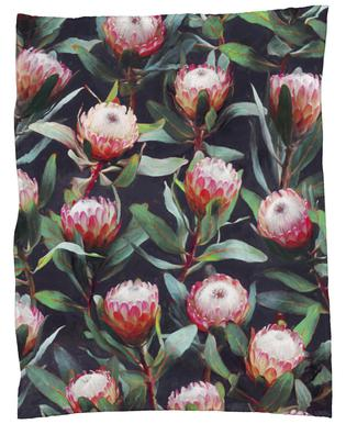 Evening Proteas in Color plaid