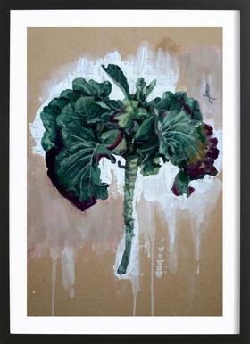Velo Grablje - Brussels Sprouts -Bild mit Holzrahmen