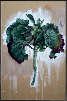 Velo Grablje - Brussels Sprouts