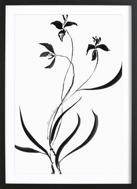 Orchid 1 affiche sous cadre en bois