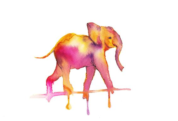 Elephant -Alubild