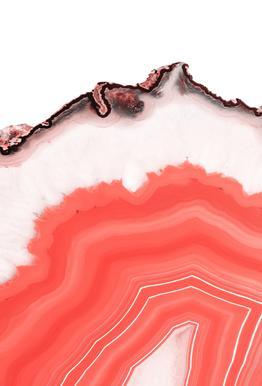 Living Coral Agate Aluminium Print