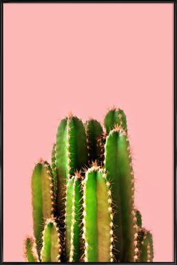 Cactus Time Framed Poster