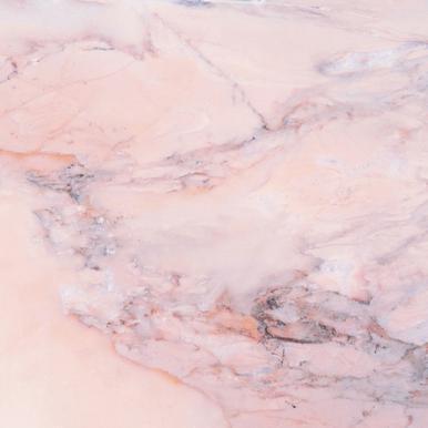 Blush Marble toile