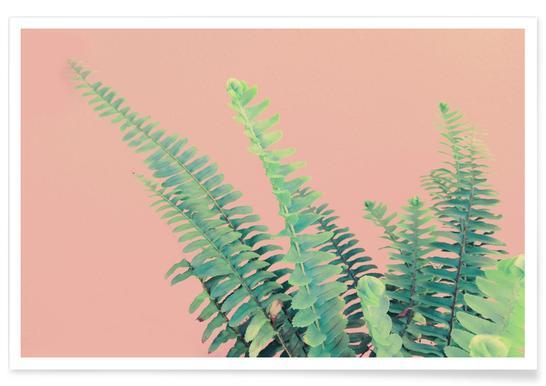 Ferns on Blush Prints affiche