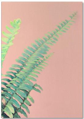 Ferns on Blush Prints -Notizblock