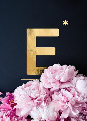 Flower Alphabet E Canvas Print