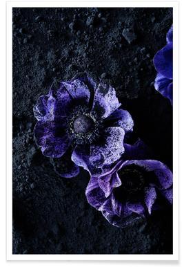 Flowers Three -Poster