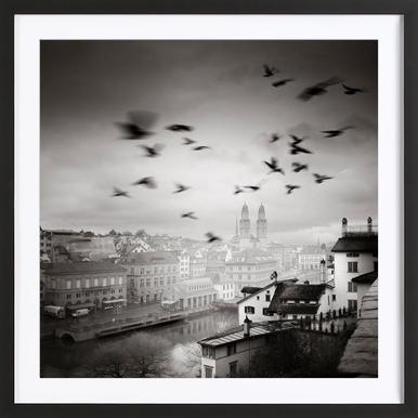 Lindenhof View Framed Print