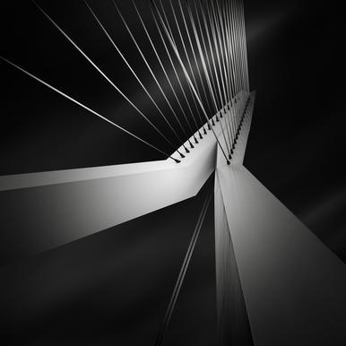 Metropolis Erasmusbrug Aluminiumtavla