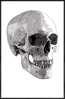 Skull 2 Framed Poster