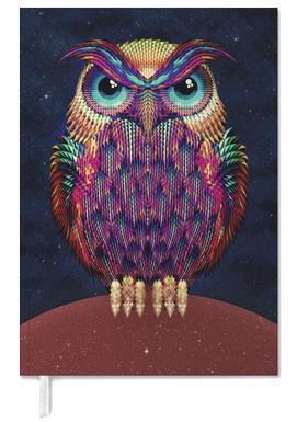 Owl 2 agenda