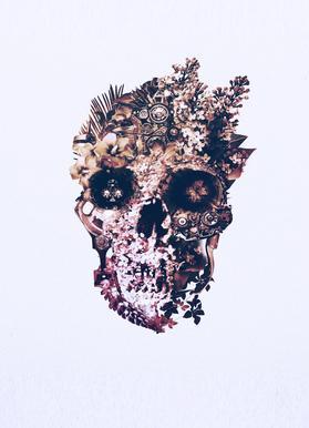 Metamorphosis Light Canvas Print