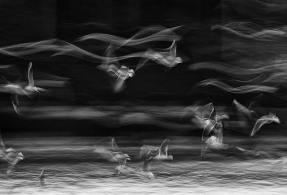 The boundary between reality and fantasy - Ebrahim Bonab -Alubild