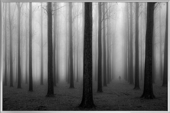 In a fog - Jochen Bongaerts