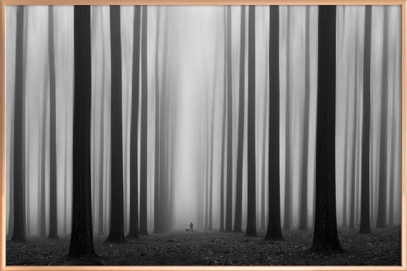 Labyrinth - Jochen Bongaerts