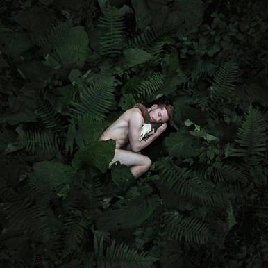 Back To Nature - Michal Zahornacky