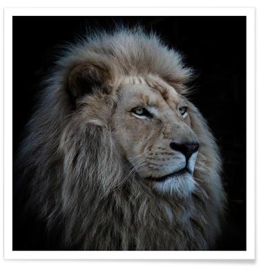 Proud Lion - Louise Wolbergs - Premium Poster
