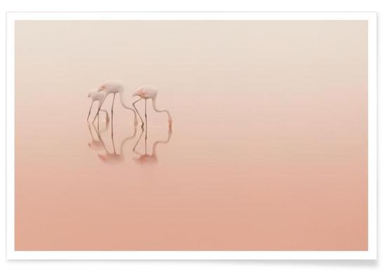 Pink Silence... - Natalia Rublina - Poster