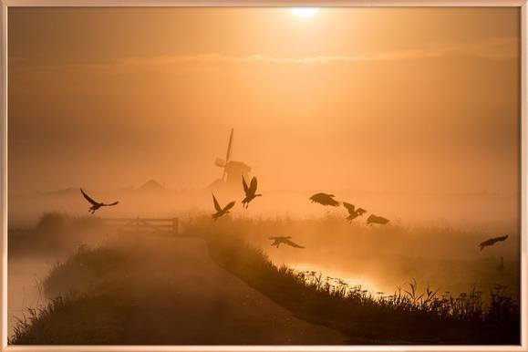 Sunrise Flight - Harm Klaverdijk