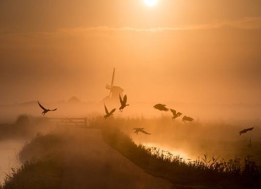 Sunrise Flight - Harm Klaverdijk toile
