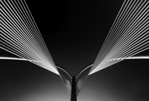 Wings - Nasrul Effendy Aluminium Print