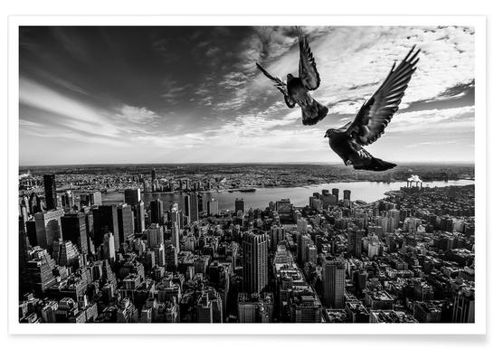 Pigeons on the Empire State Building - Sergiosousa Poster