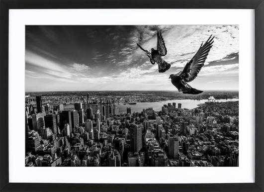 Pigeons on the Empire State Building - Sergiosousa Framed Print