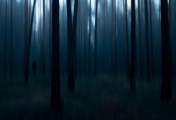 Man In The Forest - Christian Lindsten