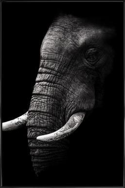 Portrait - Wild Photo Art affiche encadrée