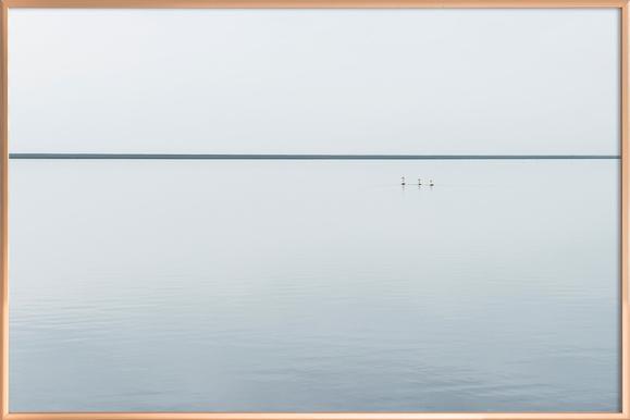 Three Swans - Viggo Johansen