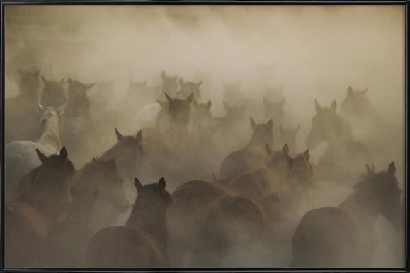 In Dust - Hüseyin Taşkın Framed Poster