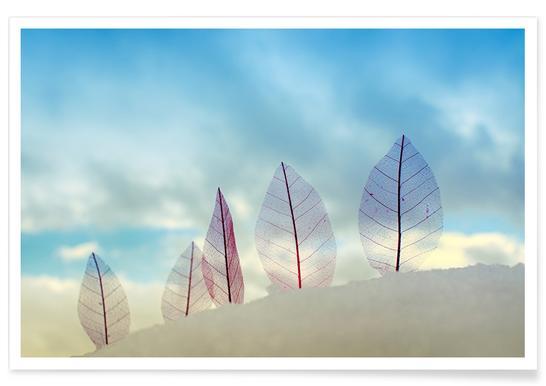 Untitled - Miki Meir Levi