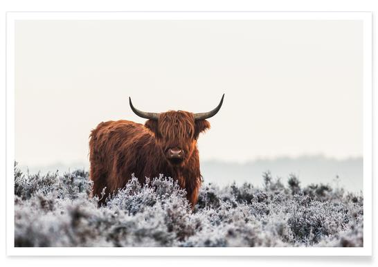 Highlander - Jaap Van Den -Poster